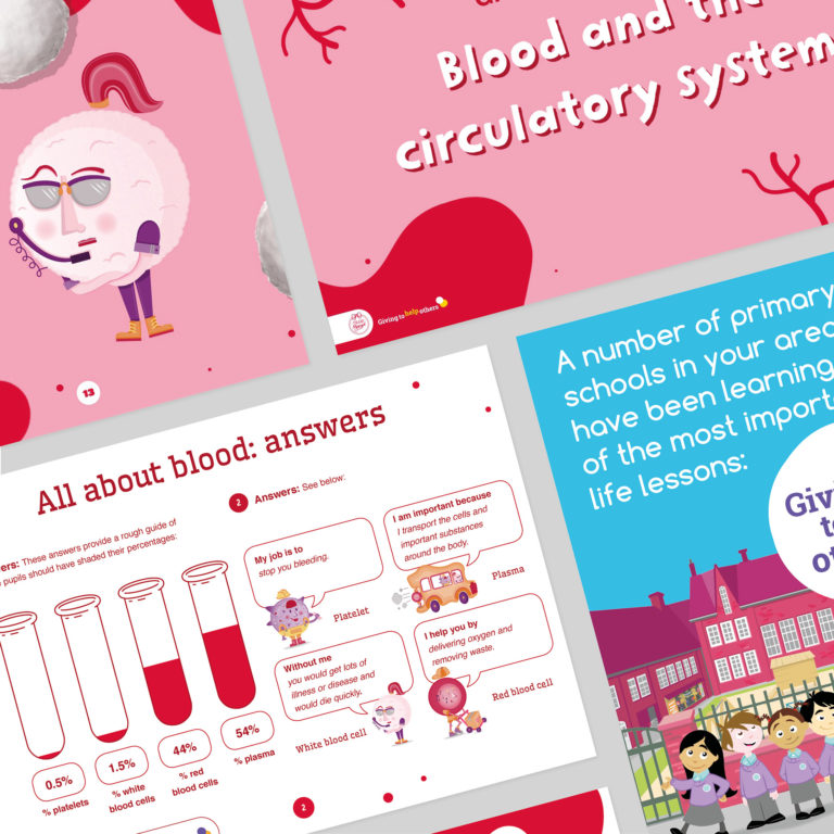 Dynamic Resources to Introduce Blood Donation to Young People for Team Margot Foundation